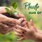 Adulto segura uma muda de árvore e entrega para uma criança